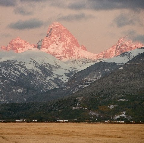 Who is Teton Valley Vacation Rental?