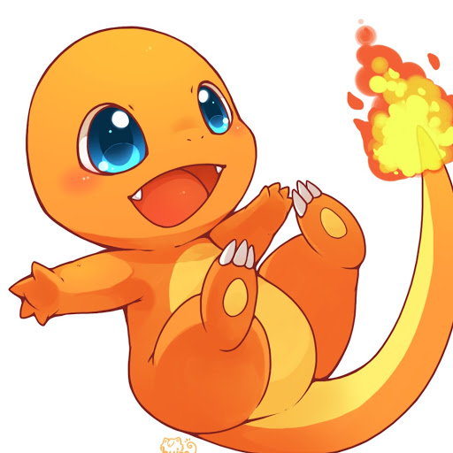 Charmander Surfer instagram, phone, email