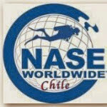 Who is NASE Chile?