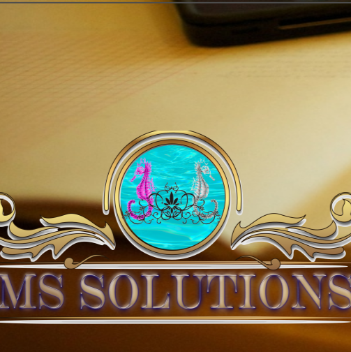 MS Solutions Argentina instagram, phone, email