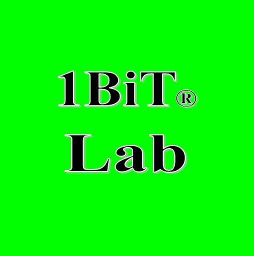 Who is 1BiT Lab?