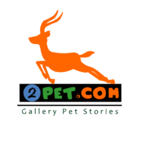 Who is Gallery Pet Stories?