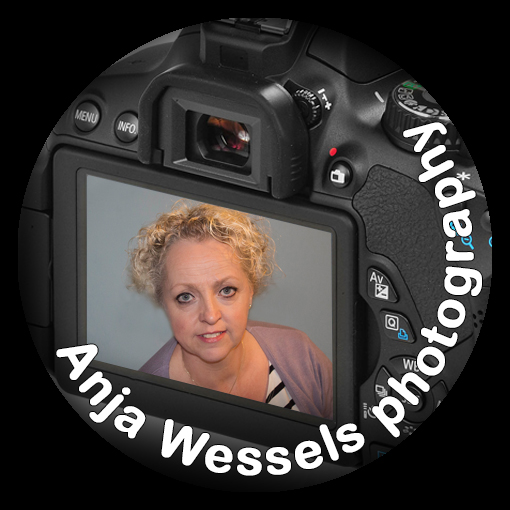 Who is Anja Wessels Photography?