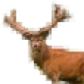 Who is Pixel Stag?