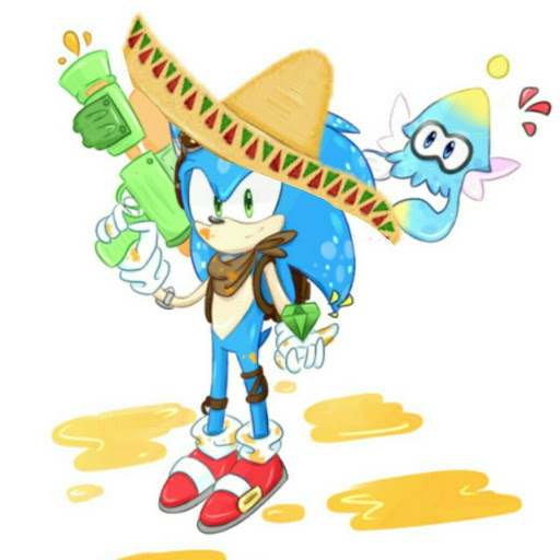 "Who is David erizo ""sonic erizo"" *gameplays, blogs y mas*?"