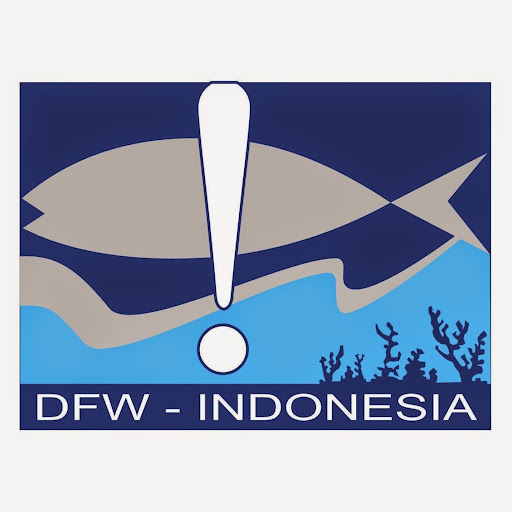 Who is DFW Indonesia?
