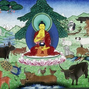 Who is Buddha Society For Animal Welfare (BSAW)?