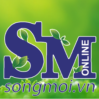 Who is Songmoi News?