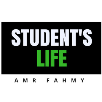 Who is Amr Fahmy?