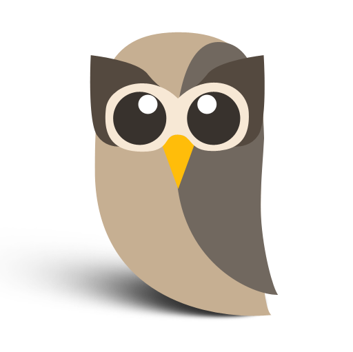 Who is HootSuite Media?