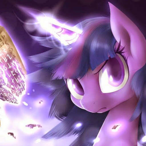 Who is Princess Twilight Sparkle?