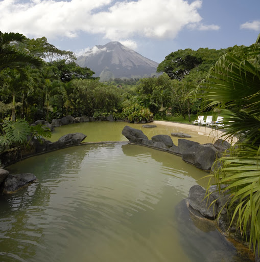 Who is Arenal Paraiso?
