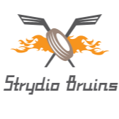 Who is Strydio Bruins?