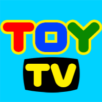Who is TOY TV?