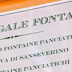 Who is Studio Legale Fontaine?
