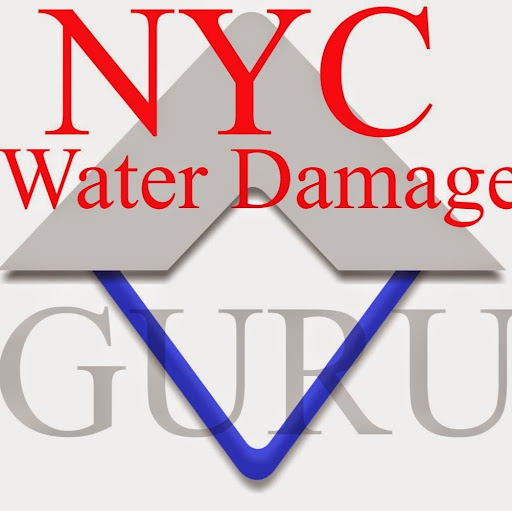 Who is NYC Water Damge?