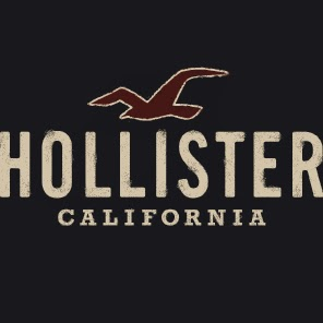Who is Hollister Camisetas?