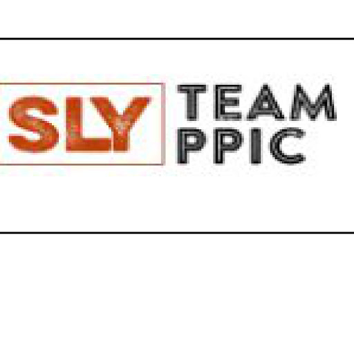 Who is Ppic Sanlyindustries?