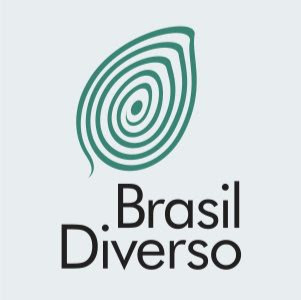 Who is brasildiverso?