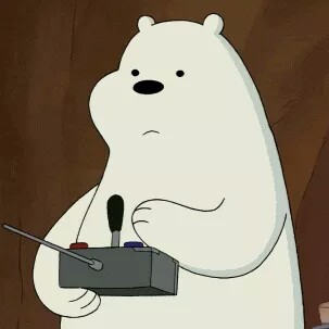 Who is Ice Bear?