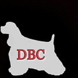 Who is DBC BOOK PRODUCTIONS?