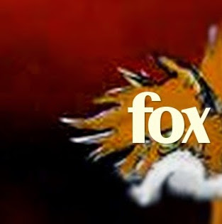 Who is Fox Band?