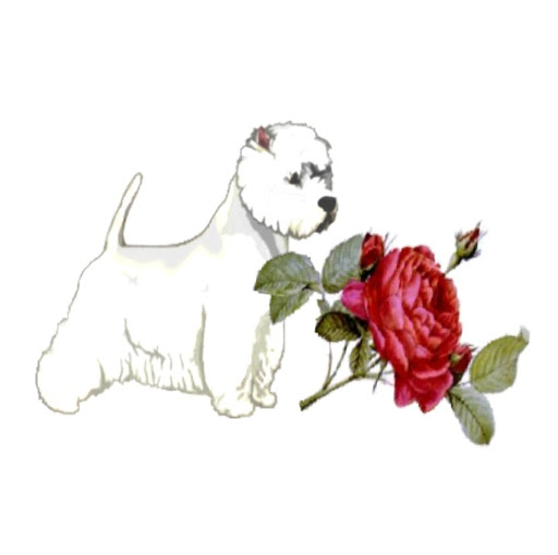 Dogs At Roses photo, image