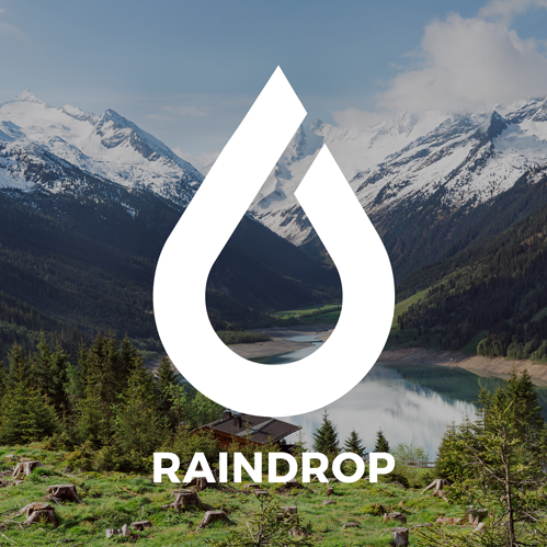Who is Raindrop?