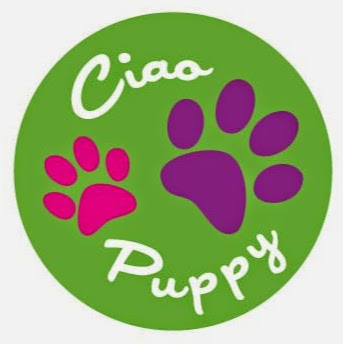 Who is Ciao Puppy?