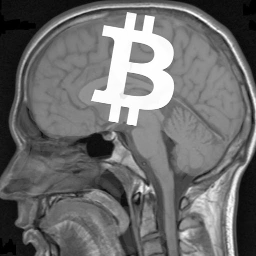 Who is Bitcoin Doctor?