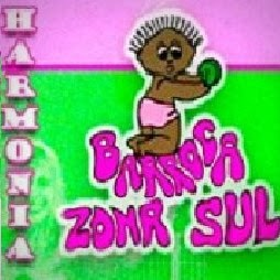 Who is Harmonia Barroca Zona Sul?