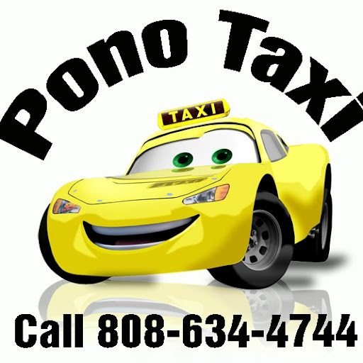 Who is Pono Taxi and Kauai Tours?