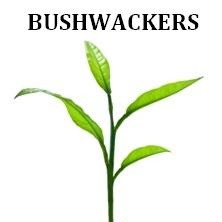 Who is Bushwackers Svg?