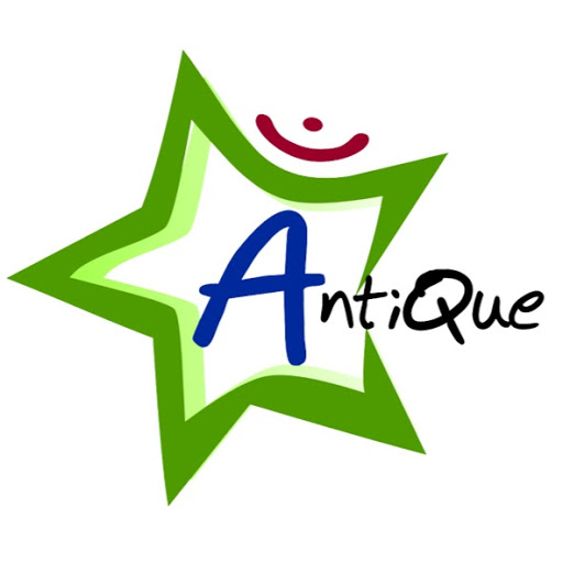 Who is antique organizer?