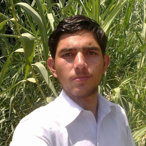 Zohaib Iqbal about, contact, instagram, photos