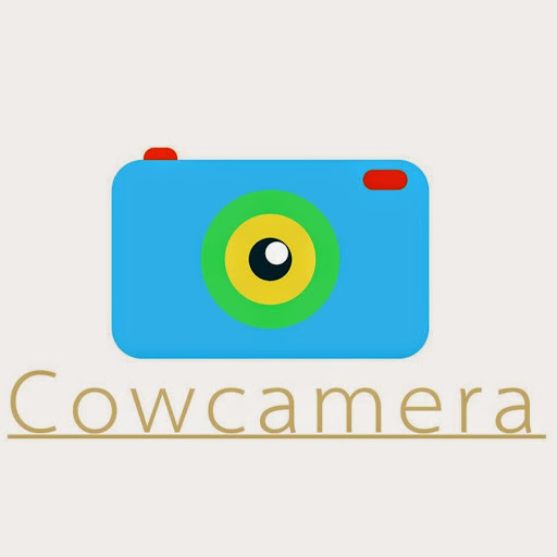 Who is Cow Camera?
