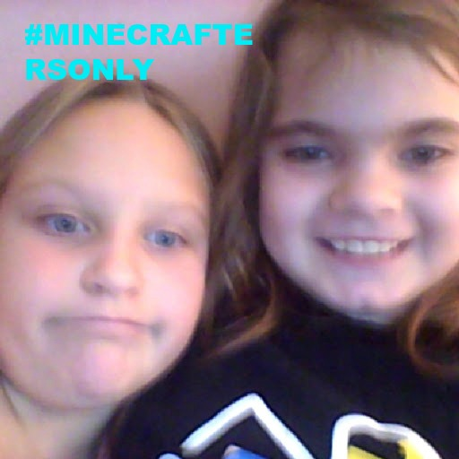 the mincrafters !!