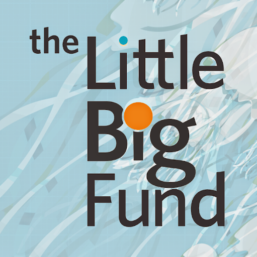 Who is The LittleBigFund?