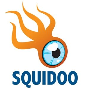 Who is Squidoo Google+ Community?