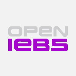 Who is Open IEBS?