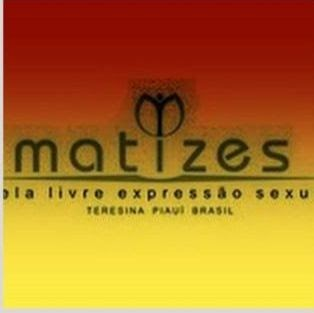 Who is GRUPO MATIZES?