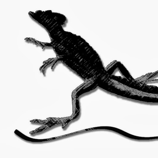 Who is EscolaTriatló Basiliscus?