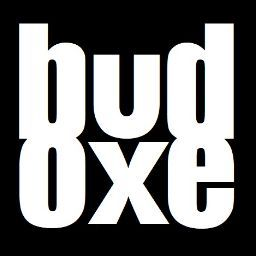 Who is budoxe lee?