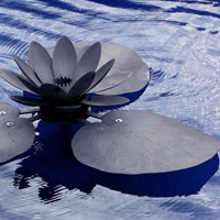 sutra lotus photo, image