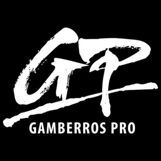 Who is gamberrosprotv?