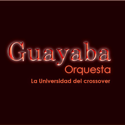 Who is Guayaba Orquesta?